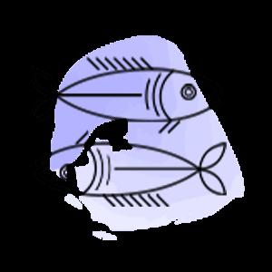 Balık Burcu